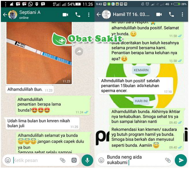 Chat 3 Fertilev dan Fertimex